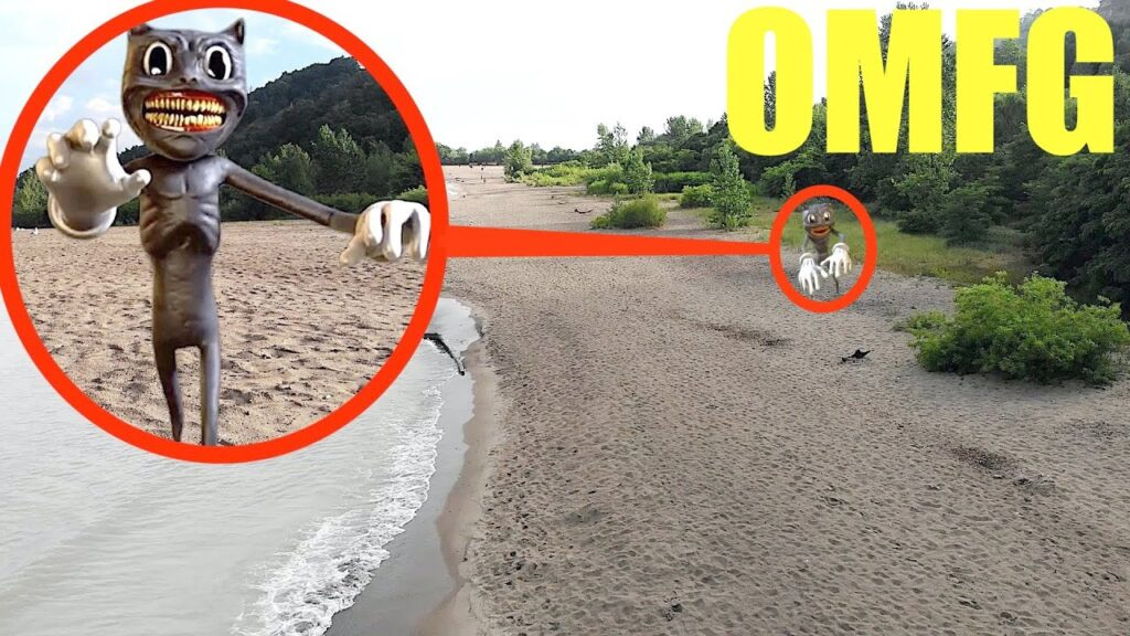 you won't believe what my drone caught on camera at the beach (cartoon cat sighting)